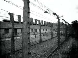Auschwitz barbed wire fence and buildings